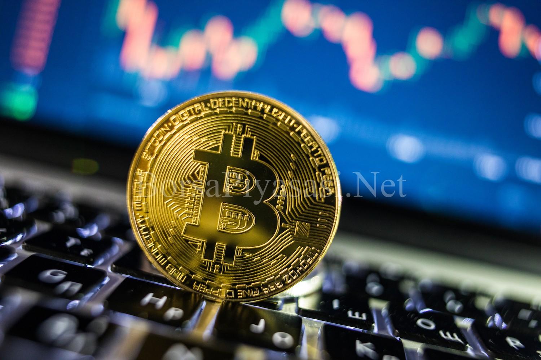 Dünyada En Fazla Bitcoin Kullanımına Sahip Olan  Ülkeler